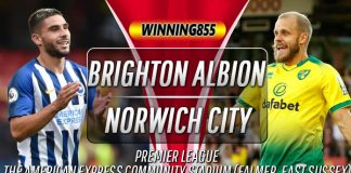 Prediksi Brighton Albion vs Norwich City 2 November 2019