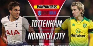 Prediksi Tottenham vs Norwich City 23 Januari 2020