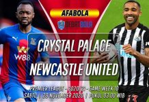 Prediksi Crystal Palace vs Newcastle United 28 November 2020